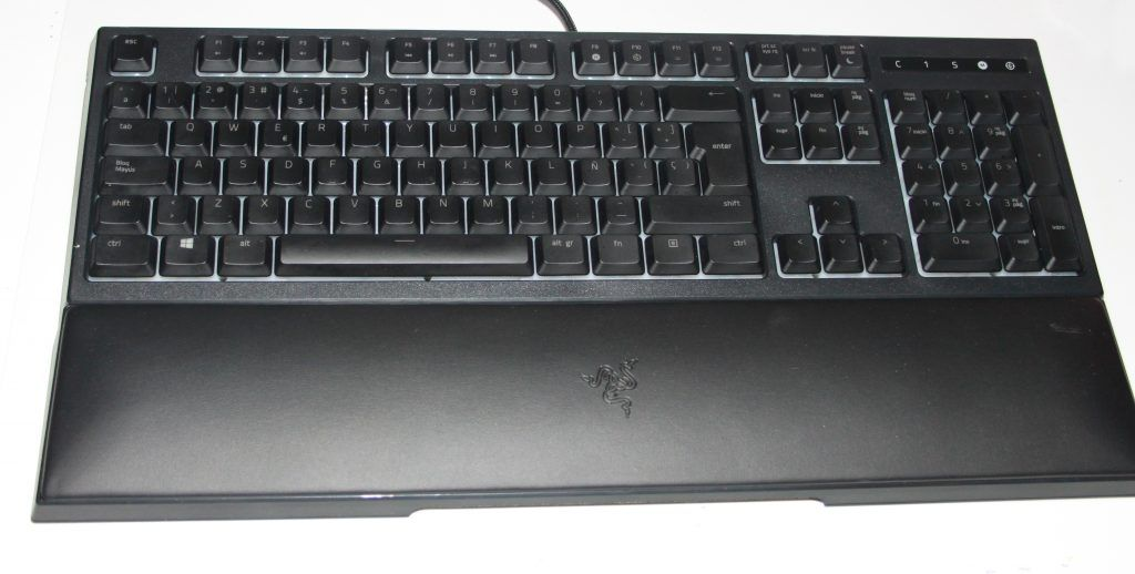 IMG 8248